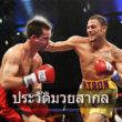 Boxing-international